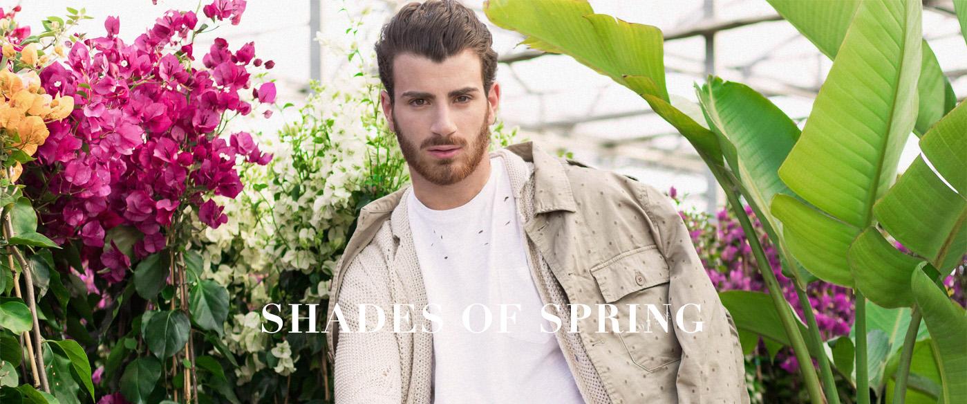Shades of spring_1.jpg